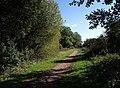 Castleman Trailway - geograph.org.uk - 1541507.jpg