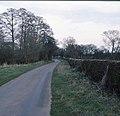 Catton Lane, Topcliffe - geograph.org.uk - 876067.jpg