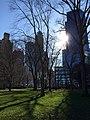 Central Park - New York - USA - panoramio (19).jpg