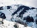 Cerro Catedral08.jpg