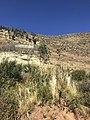 Cerro desde el camino de Incallajta.jpg