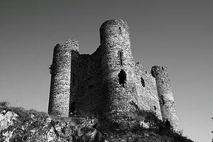 Château d'Alleuze - Château d'Alleuze