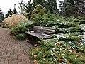 Chadwick Arboretum (32479295622).jpg