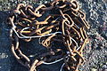 Chain, North Dock, Ardglass, November 2010.JPG