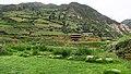 Chavín de Huantar-29.jpg
