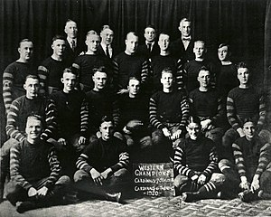 History of the Chicago Cardinals - The Chicago Cardinals in 1920.