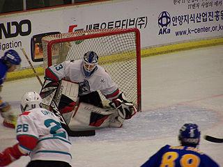 Wade Flaherty Canadian ice hockey player