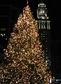 Christmas tree near the Quincy Market.jpg