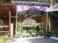 Chrysanthemum Doll and Flower Festival 10.JPG