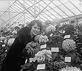 Chrysanthemum show, 1925 Nov 5. (4).jpg