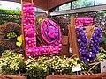 Chrysanthemun Exhibition 菊花展 - panoramio.jpg