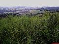 Cidade de Tuiuti vista da SP-095 no Alto da Serra - panoramio.jpg