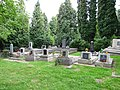 Cmentarz żydowski w Przemyślu 1.jpg