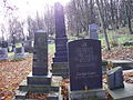 Cmentarz żydowski w Przemyślu 2.JPG