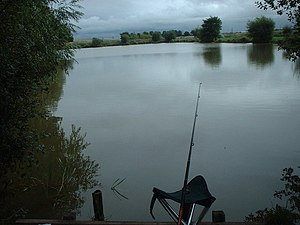 Coarse fishing - Image: Coarse fishing water at Burton geograph.org.uk 481208