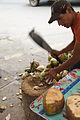 Coconuts in Ameca.jpg