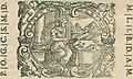 Codroipo - Dialogo de la caccia de' falconi, astori, et sparvieri, 1614 (page 3 crop).jpg