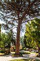 Corfu, Greece - panoramio (70).jpg