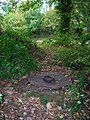 Covered Well near Lot's Pond - geograph.org.uk - 596299.jpg