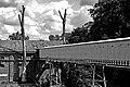 Cukrownia w Małej Wsi 2009 - panoramio.jpg