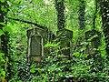 Częstochowa - cmentarz żydowski;,.jpg
