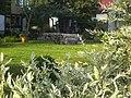 Dārzs-Garden - panoramio.jpg