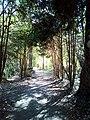 DE NRW Muenster Wolbecker-Tiergarten005.jpg