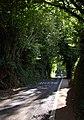 Dairy Hill, Torquay - geograph.org.uk - 1499295.jpg