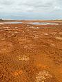 Dallol-Au bord du lac acide (3).jpg