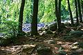 Das Felsenmeer 5.JPG