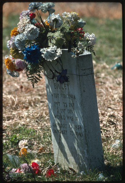 Decorated Tombstone in Bailey-Boggess Cemetery