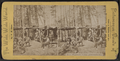 Deer Hunters' Camp, Adirondacks, by Chase, W. M. (William M.), 1818 - 9-1905.png