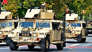 Polish Special Forces - Wojska Specjalne M1165A1 Special Ops.