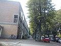 Delft - 2011 - panoramio (318).jpg