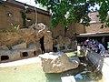 Denver Zoo 14.jpg