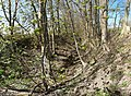 Der Semmengraben nördlich Obermehler.jpg