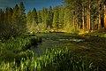 Deschutes National Forest Metolius River (37022633962).jpg