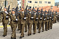 Desfile final de la Jura de Bandera (15449348285).jpg