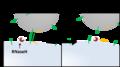 Design 10-22RNaseHによる分解反応.png