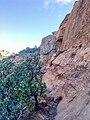 Devil's Bridge Trail, Sedona, Arizona - panoramio (43).jpg