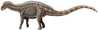 Dicraeosaurus - Restoration of D. hansemanni
