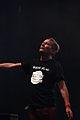 Didier Wampas IMG 4846.jpg