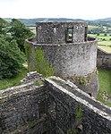 Dinefwr Castle 5 (35575350855).jpg