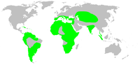 Distribution.palpimanidae.1.png