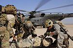 Djibouti exercise 130116-F-HB112-110.jpg