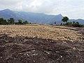 Dolmens @ Marayoor - panoramio (3).jpg