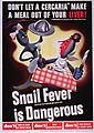 Don't let a cercaria make a meal out of your liver, snail fever (schistosomiasis) is dangerous (4647270743).jpg