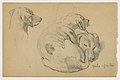 Drawing, Milo (a Pointer) Three Studies, Milo (a Pointer) Two Studies, ca. 1862 (CH 18370007).jpg
