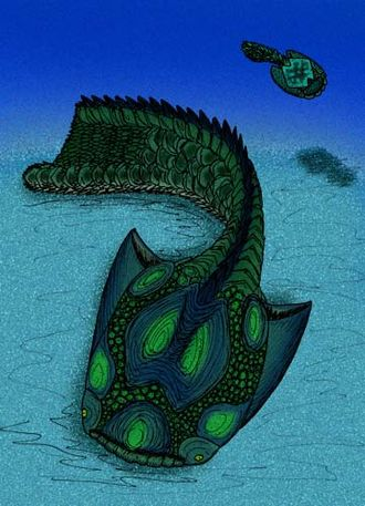 Drepanaspis - Drepanaspis gemuendenensis reconstruction