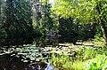 Druskininkų Eglės tvenkinys.JPG